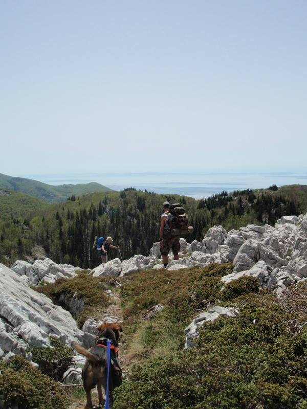 4 planinara,5 pari nogu,9 dana,114 km Velebita 10390410_10203910002221560_4960028613648255233_n_zps6b8af550