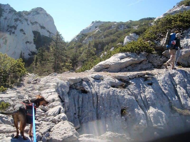 4 planinara,5 pari nogu,9 dana,114 km Velebita 10414475_10203909996301412_7747670551460648099_n_zps0fdc21fe