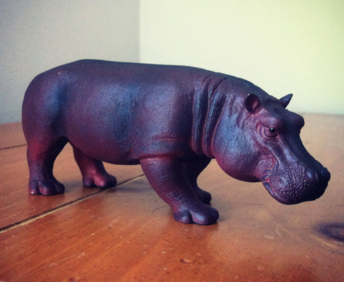 Mojo pictures on Toy Animal Wiki Mojo-hippo