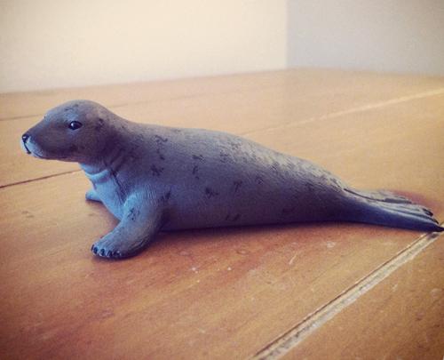 Mojo pictures on Toy Animal Wiki Mojo-seal