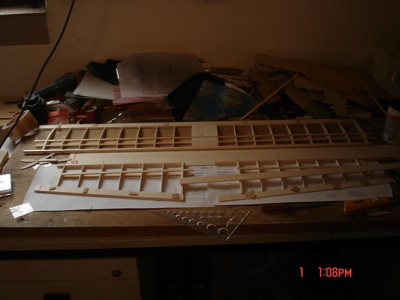 Model kojega radim DSC01060