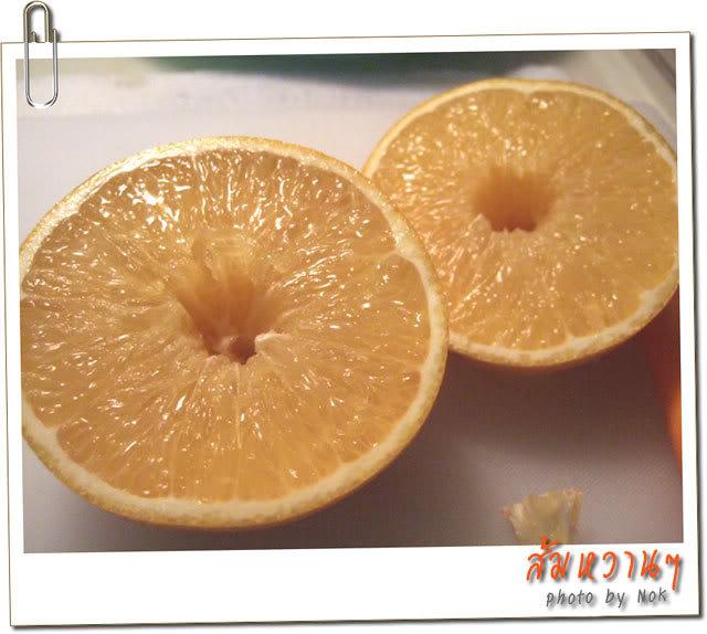 فن تقطيع الخضروات و الفواكه 2006_11060105