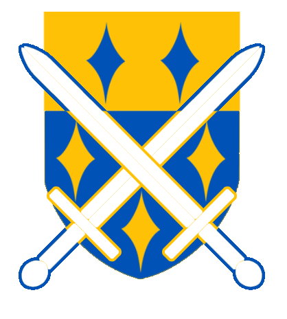 Defenders of Dragons' Cove Shield
