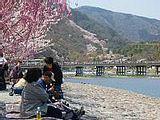 Hanami : la contemplation des fleurs Th_arashiyama