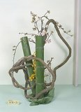 L'ikebana Th_nohonkoryu15