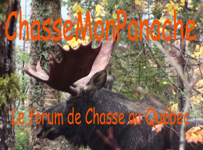 ChasseMonPanache