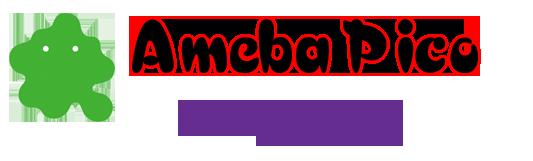 Guía Ameba Pico Guiadh