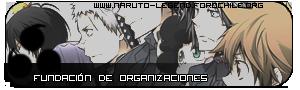 Fundación de organizaciones