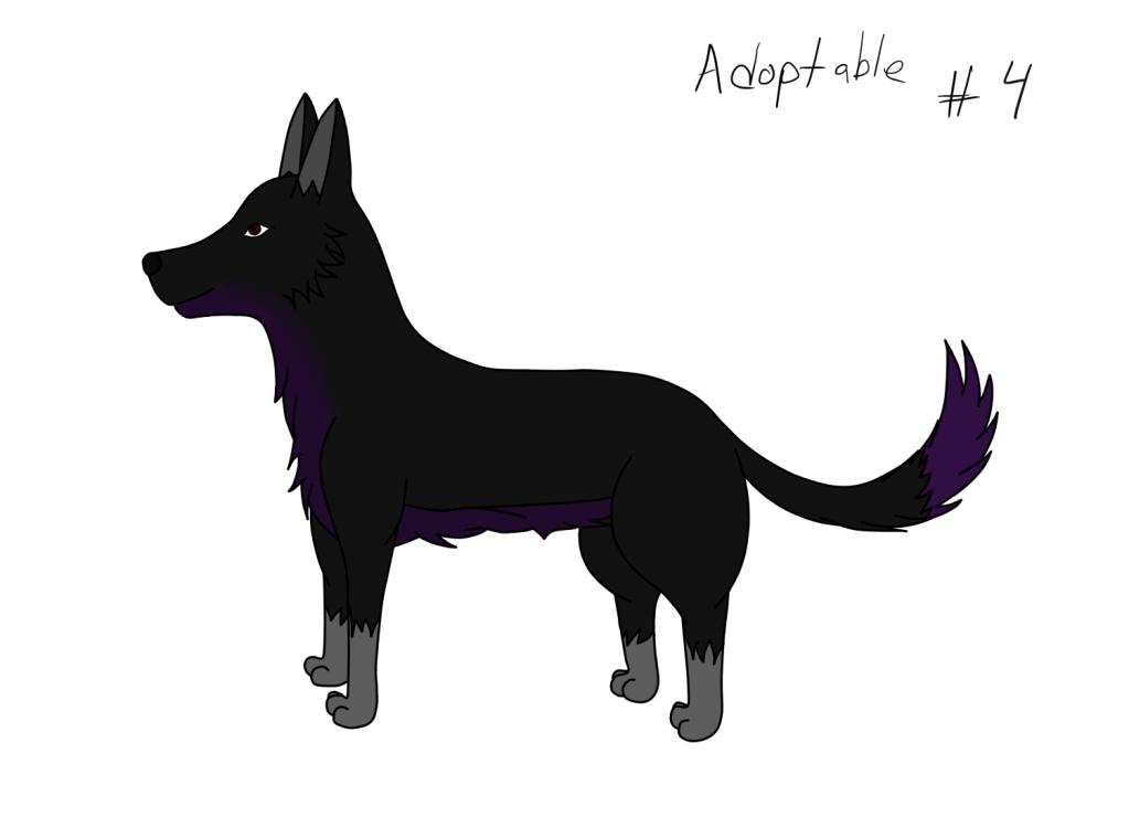 Adoptables Adoptable4