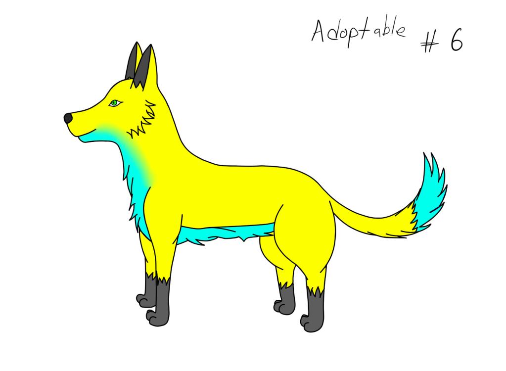 Adoptables Adoptable6