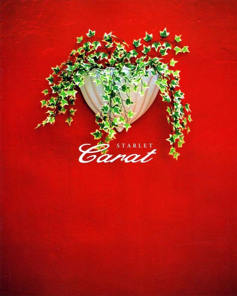 EP91 Carat Brochure Ep91_carat_002_zps3ac2ac07