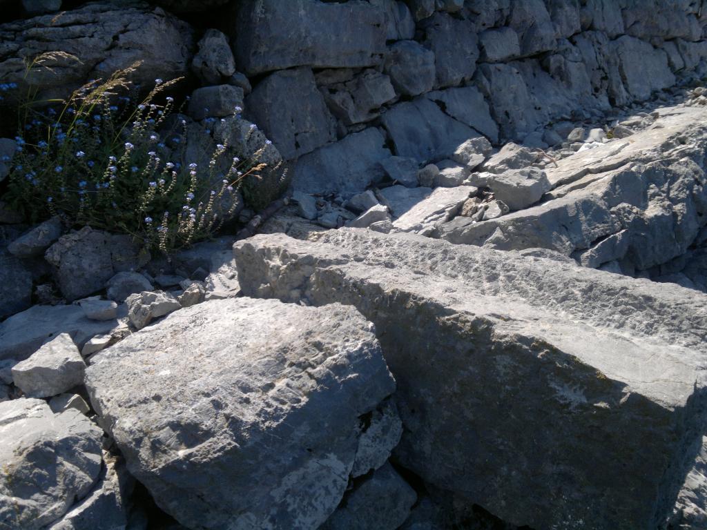 20 dana Velebita 2014-07-18-3900_zps9b0b606c