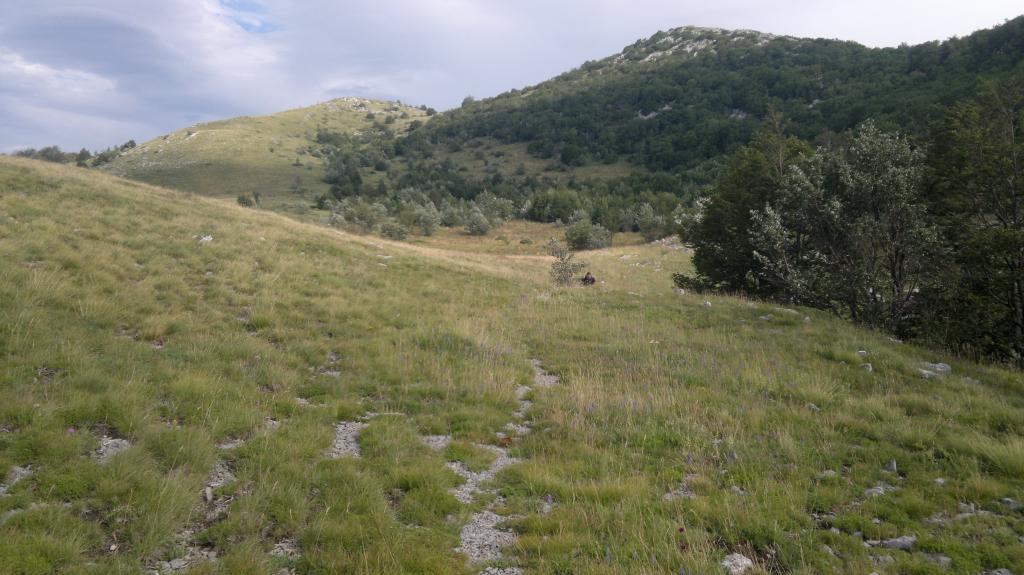 20 dana Velebita 2014-07-23-4238_zps27c0b54c