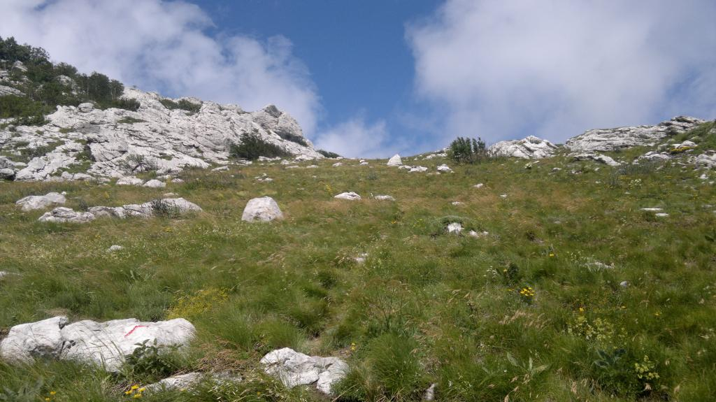 20 dana Velebita 2014-07-23-4285_zps25a1372d