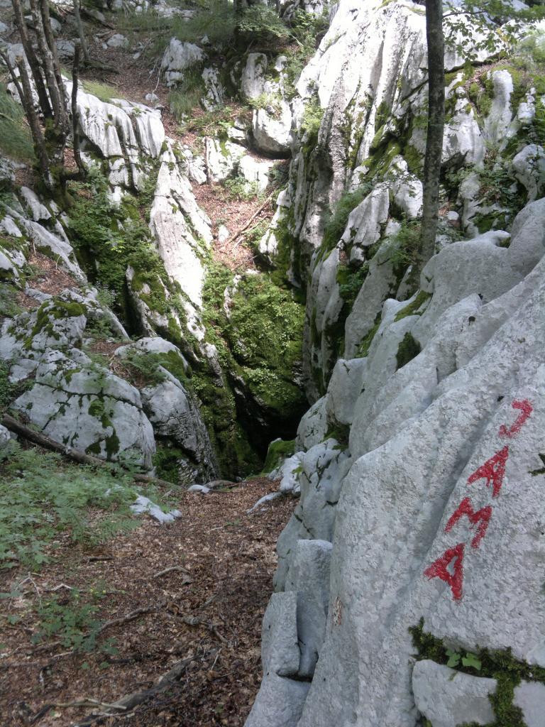 20 dana Velebita 2014-07-24-4384_zps93c344b7