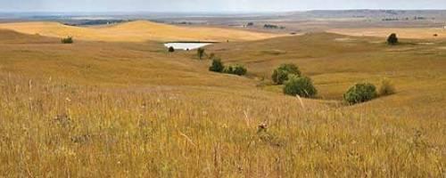 Great Plains (Main Den) TheGreatPlains
