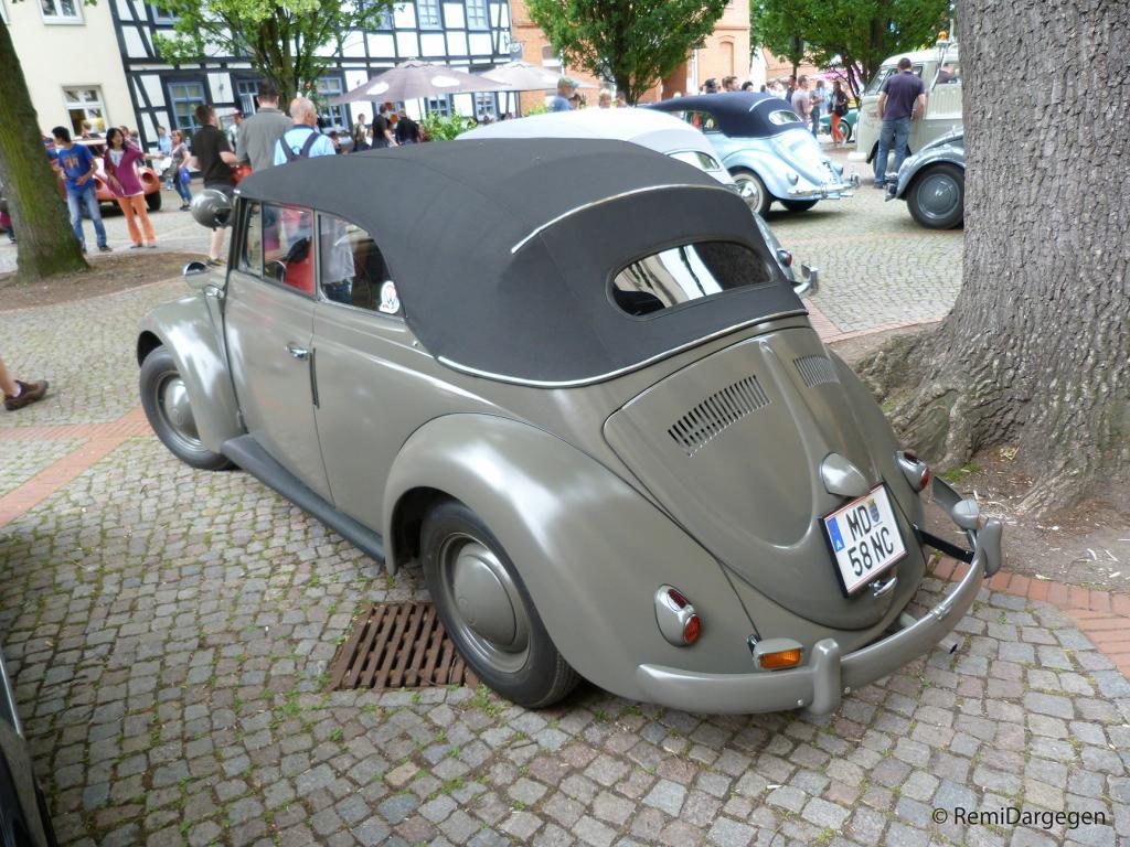 Hessisch-Oldendorf 2013 (D) P1050967