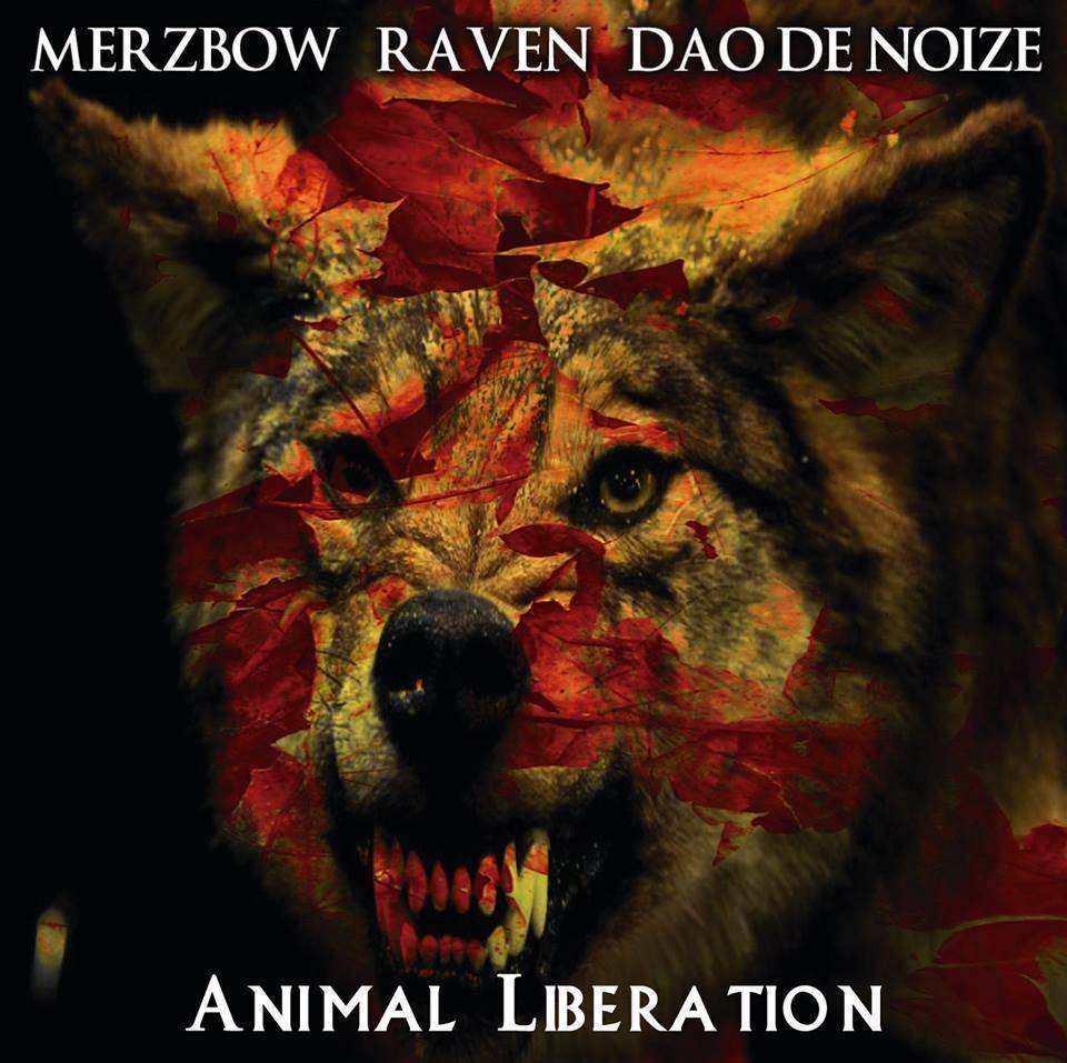 MERZBOW / RAVEN / DAO DE NOIZE CD Out Now! [4iB Records] 11755662_1153091611372837_88210267387607501_n_zpsexofjs0i