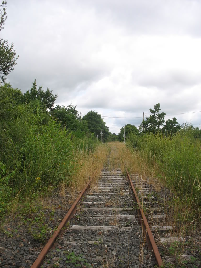 Ligne de St Hilaire de Chaléons à Paimboeuf de 1876 à nos jours 20-PN16Lafeuillardais