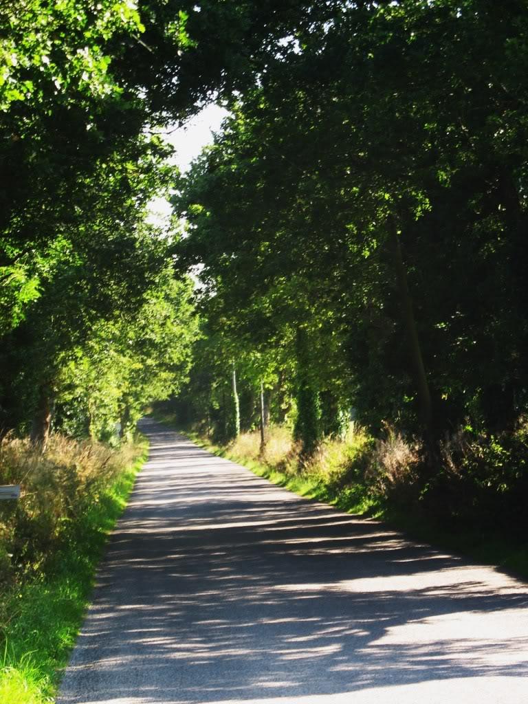 Ligne de Quimperlé-Pont-Aven-Concarneau (1903-1908-1909-1936) 24-NizonversroutedeConcarneau