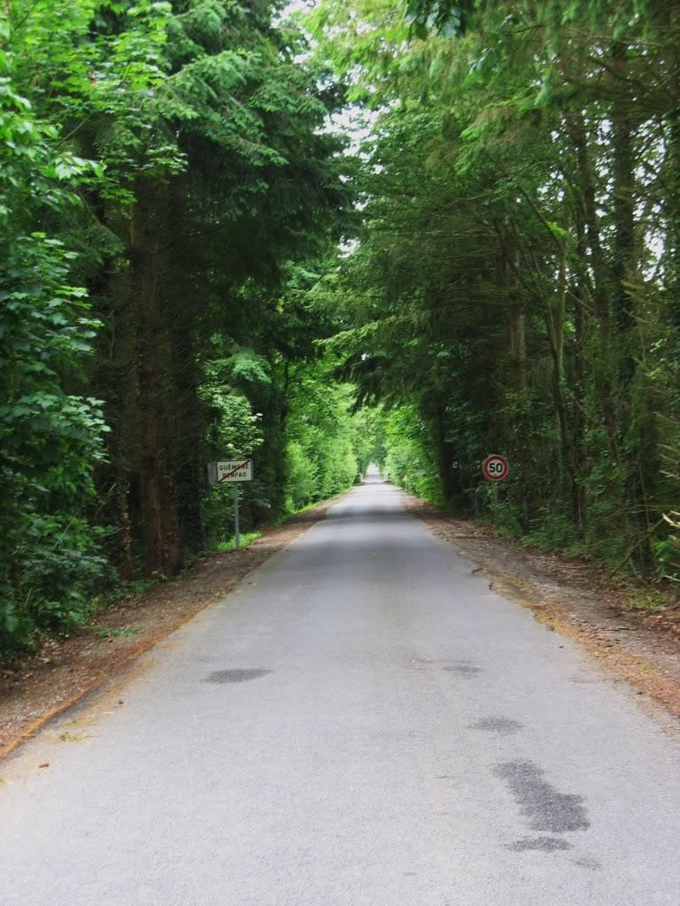 Ligne de La Chapelle sur Erdre - Blain - Beslé (1901-1910-1952) 51-LaligneGumnvilleversTrefouxGunouvry