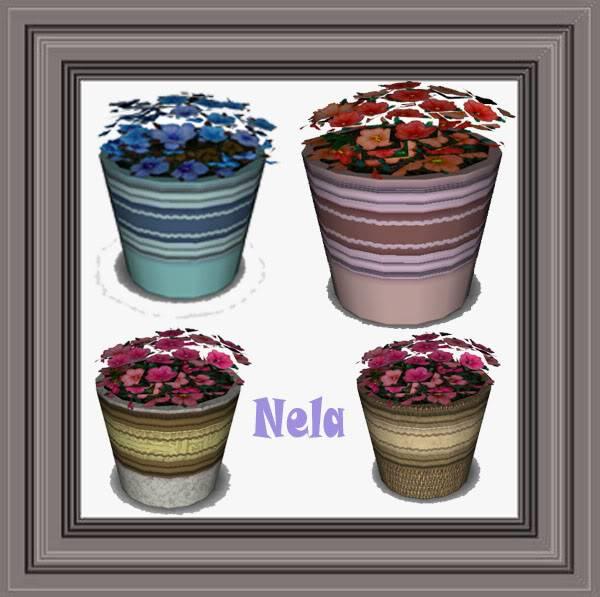 Blog de Nela Sinttulo-5
