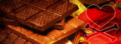 My galery ~ Chocolate