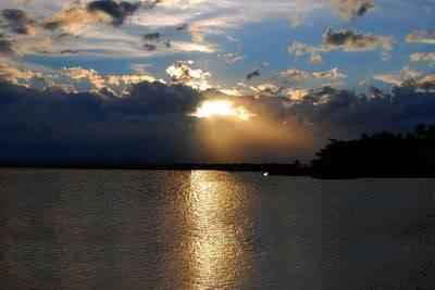 No sun set photo shoot Sunsetfelis2_resize