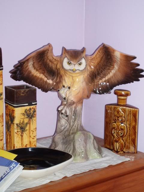 Aquila Owl P1010046