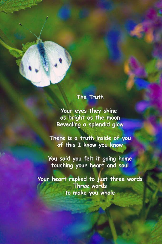அழகிய மலர் காட்சிகள் (01) - Page 16 Thetruthsilverbook3d