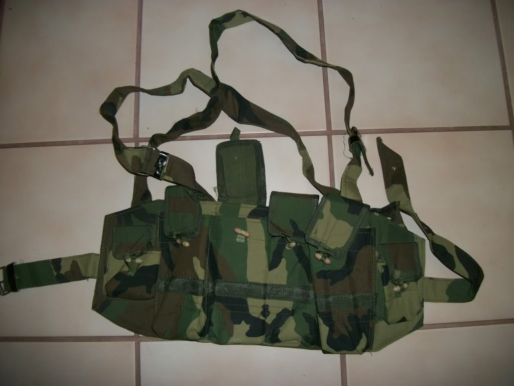 Possible ANA chest rig....Recent Find 101_2700