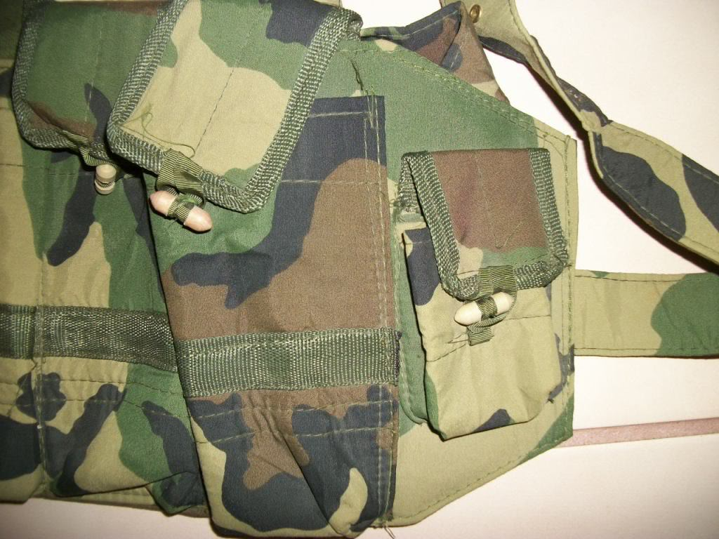 Possible ANA chest rig....Recent Find 101_2701