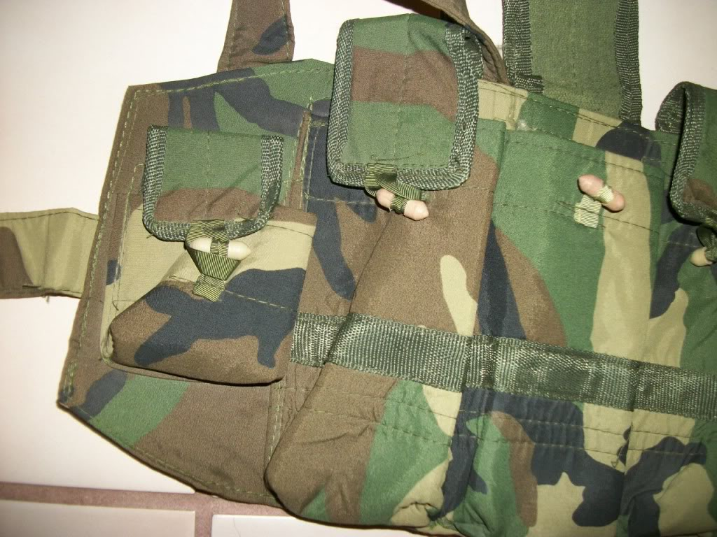 Possible ANA chest rig....Recent Find 101_2703