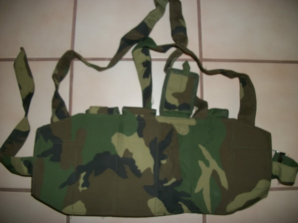 Possible ANA chest rig....Recent Find 101_2707