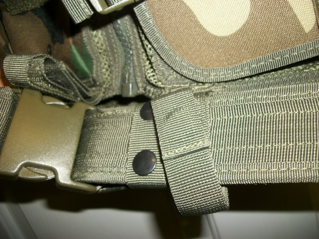 Possible ANA chest rig....Recent Find 101_3705