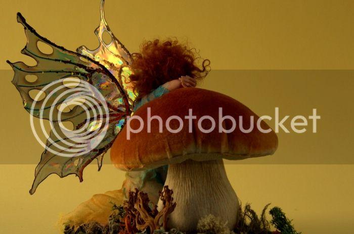 Autumn Fairy DSC_6756NEF