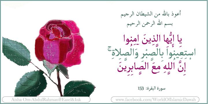 seek help in patience and in prayer (Arabic) 62706330652062A064E06390650064A0646064F06480627062806500627064406350651064E0628065206310_zps082da32b