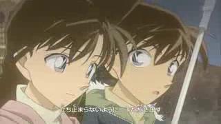 Shinichi-Ran 24edqxi
