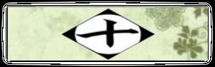 10ª división