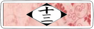 13ª División
