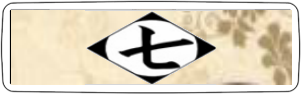 7ª División