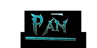DRAGON SLAYER Pan
