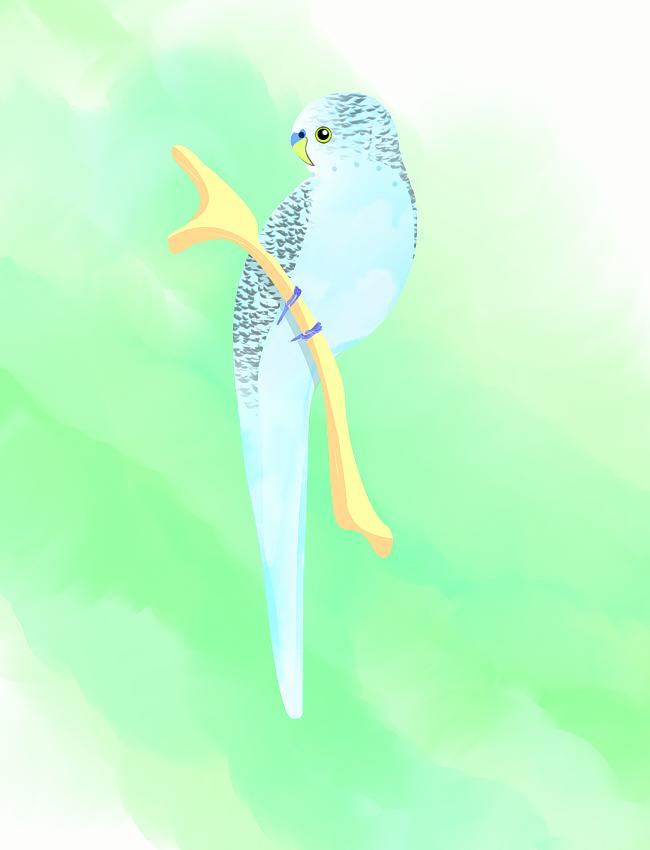 LP QUINCENAL #41  [FREESTYLE] My-little-bird_zps8df43b67