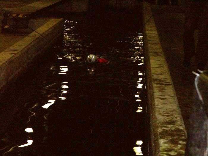 Hundesvømming på Holt Hestesenter! HH13