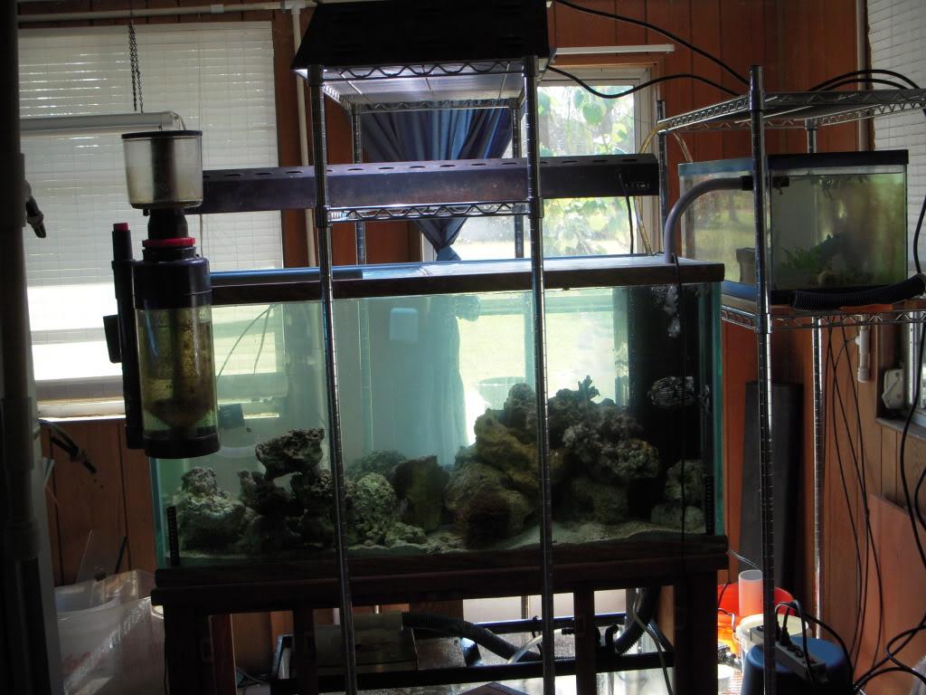 120g reef build DSCN6804