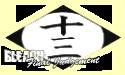 13ª División - 十三