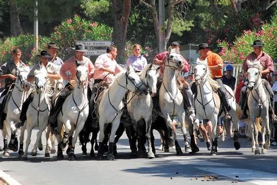 La fé di biou (la foi du taureau) Festival-d-abrivado-a-grande-motte-452506