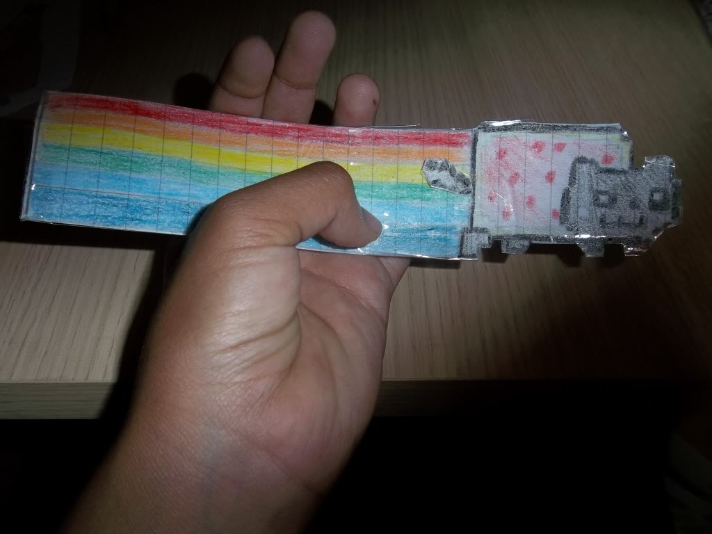 Mi separador de Nyan Cat! 100_0356