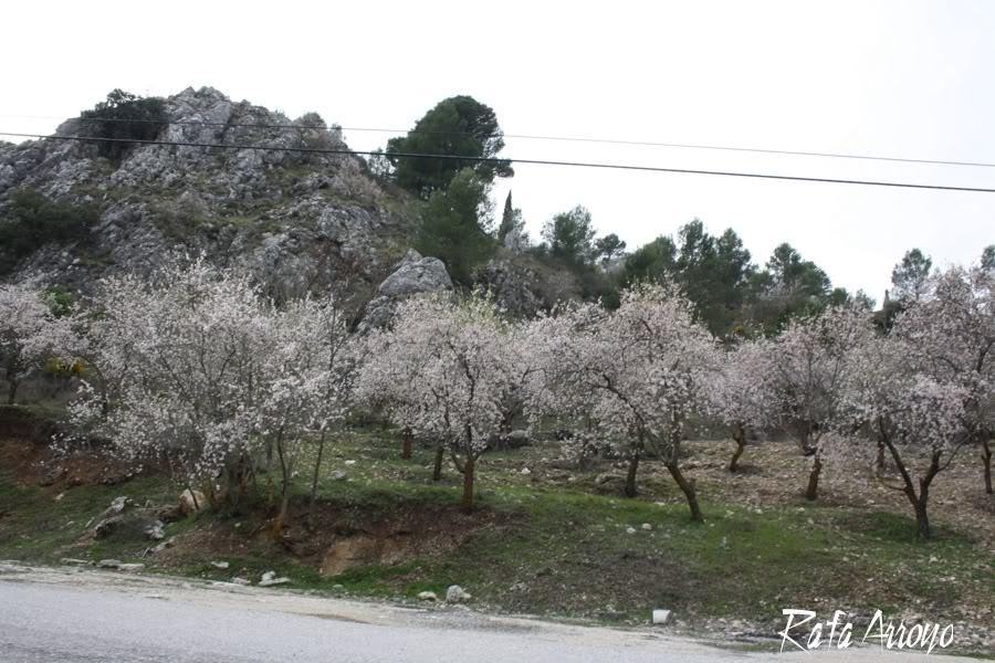 Fotos de la VI Ruta de Clasicoche CR324