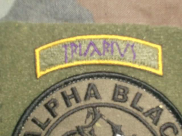 Order of the Triarius Tabs HPIM1025